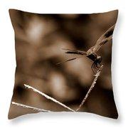 Sepia Dragonfly Throw Pillow