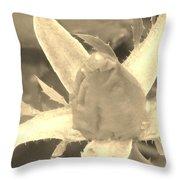 Sepia Rose Bud Throw Pillow