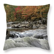 Septembers Song Throw Pillow