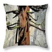 Sequoia And El Capitan Throw Pillow