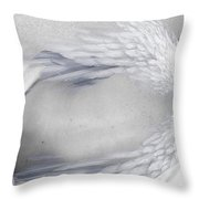 Seraph Throw Pillow