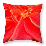 Serene Throw Pillow by Ankeeta Bansal