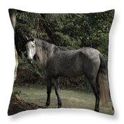 Serene Forest Throw Pillow
