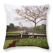 Serene Hue Throw Pillow