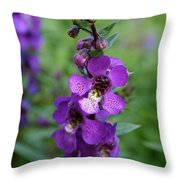 Serenita Purple Throw Pillow