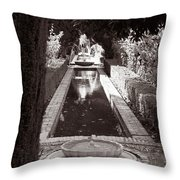 Serenity In Sepia Throw Pillow
