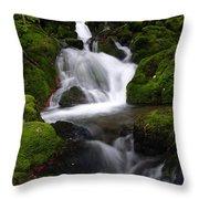 Series Of Falls Throw Pillow