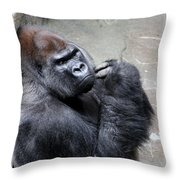 Serious Look Throw Pillow