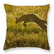 Serval Cat Pouncing Serengeti Throw Pillow