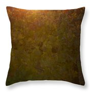 Setting In The Vines Throw Pillow