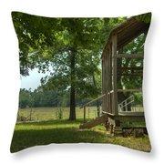 Settlers Cabin Arkansas 1 Throw Pillow by Douglas Barnett