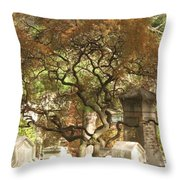 Shade For The Weary Throw Pillow