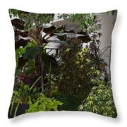 Shaded Colors Throw Pillow