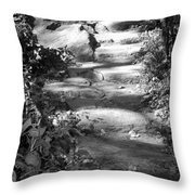 Shaded Steps Throw Pillow
