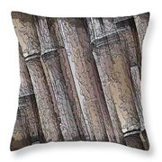 Shades Of Bamboo Throw Pillow