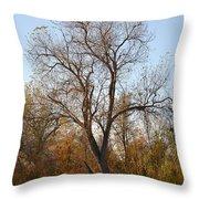 Shadow Cliff Tree Throw Pillow