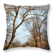 Shadow Cliffs Throw Pillow