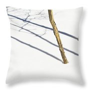 Shadow Of Small Trees On The Snow New Throw Pillow