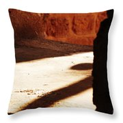 Shadow On The Windows Throw Pillow