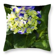 Shadowy Purple And White Emerging Hydrangea Throw Pillow