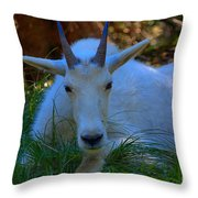 Shady Goat Throw Pillow