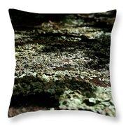 Shady Moss Throw Pillow