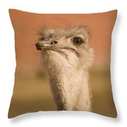 Shaking My Head Throw Pillow