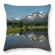 Shallow Water Reflections Throw Pillow