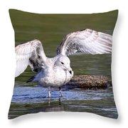 Shallows Throw Pillow