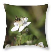 Sharing A Bud Throw Pillow