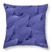 Shark Skin, Sem Throw Pillow by Ted Kinsman