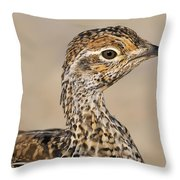 Sharp-tailed Grouse Throw Pillow