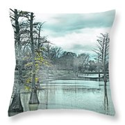 Shaw Mississippi Throw Pillow