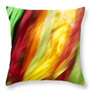 Shawl Dance Abstract Throw Pillow
