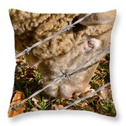 Sheep 1 Throw Pillow