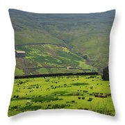 Sheep Graze In A Pasture In Swaledale Throw Pillow