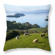 Sheep Grazing By Lough Corrib Cong Throw Pillow