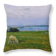 Sheep Grazing Throw Pillow