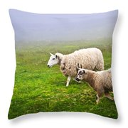 Sheep In Misty Meadow Throw Pillow