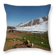 Sheep In The Atlas Mountains 02 Throw Pillow