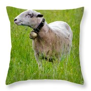 Sheep With A Bell Throw Pillow