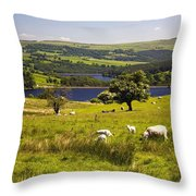 Sheffield Home Throw Pillow : Sheffield, South Yorkshire, England Photograph by John Doornkamp