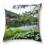 Shelburne Falls Throw Pillow