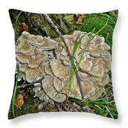 Shelf Fungus - Grifola Frondosa Throw Pillow