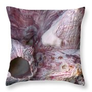 Shell - Conchology - Volcano Island Throw Pillow