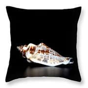 Shell On Leather 2 Throw Pillow