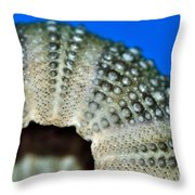 Shell With Pimples 2 Throw Pillow