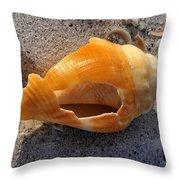 Shell Work C Throw Pillow