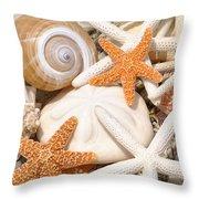 Shellebration Throw Pillow