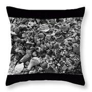 Shells Iv Throw Pillow